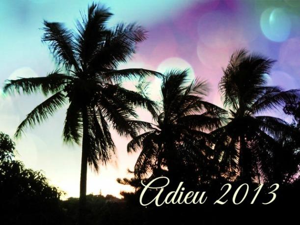 Adieu 2013