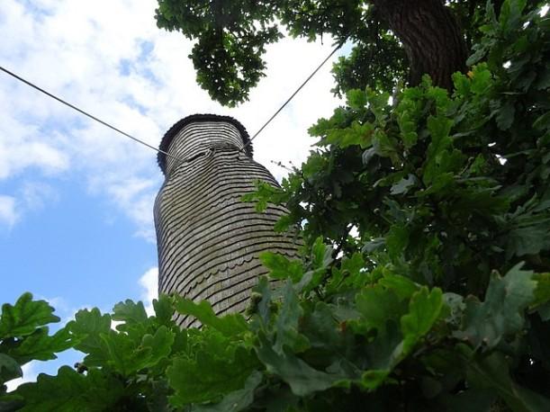 Chêne d'Allouville-Bellefosse (10)