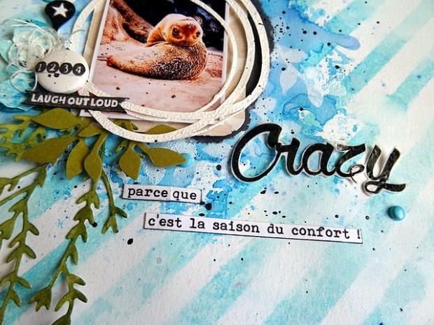 crazy-dt-the-scrapsisters-combo-de-janvier-3